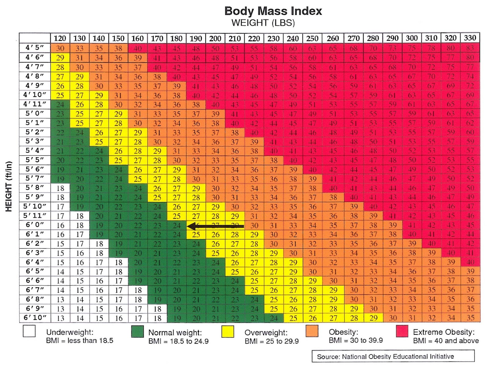 Weight chart for males over 60 bmi calculator female over 60 bmi healthy bmi chart gse bookbinder co nvjuhfo Image collections
